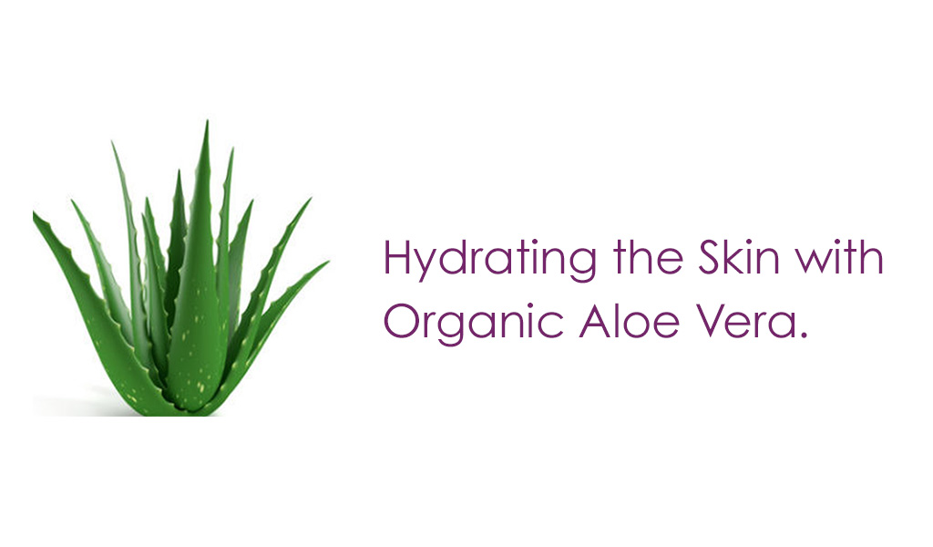 Aloe Vera Based Moisturizers. Organic Skin Care with Beeswax, Cocoa Butter, Coconut Oil, Shea Butter